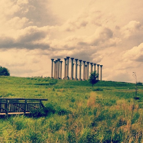 National Arboretum REALNESS. The original columns of the Eastern Portico of Our Nation's Capitol.