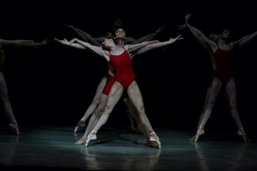 theballetblog:  Carolina Ballet, Rite of Spring