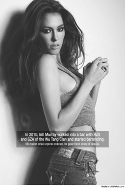 factsandchicks:  In 2010, Bill Murray walked into a bar with RZA and GZA of the Wu Tang Clan and started bartending. source