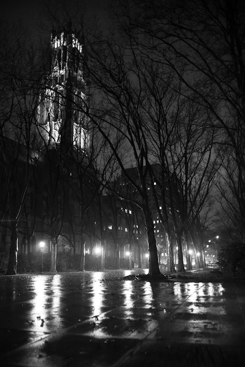 A rainy, dreary late fall evening in New York City. This is pretty much how the city looks in all of my dreams. Shot before Andrew Bird's Gezelligheid concert at the Riverside Church, December 10, 2012. © Dominick Mastrangelo