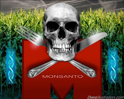 "infowarsdotcom:  Supreme Court sides with Monsanto in major patent case Richard WolfUSA TodayMay 13, 2013 The Supreme Court usually isn't friendly toward questionable patents, but it came down overwhelmingly on the side of agribusiness giant Monsanto Monday in a case that's bound to resonate throughout the biotechnology industry. The court ruled unanimously that an Indiana farmer violated Monsanto's patent on genetically modified soybeans when he culled some from a grain elevator and used them to replant his own crop in future years. ""If simple copying were a protected use, a patent would plummet in value after the first sale of the first item containing the invention,"" Justice Elena Kagan ruled in a short 10-page opinion. ""The undiluted patent monopoly, it might be said, would extend not for 20 years as the Patent Act promises, but for only one transaction. And that would result in less incentive for innovation than Congress wanted."" Read full article"