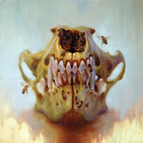 benjamin-g-craig:  Taste of Honey oil on wood panel 12x12