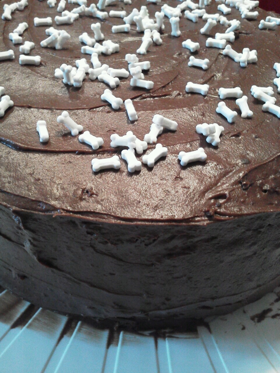 Bone break chocolate cake