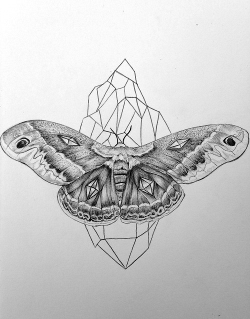 eatsleepdraw:  Crystal-Moth by Mitch https://www.facebook.com/pages/Mitchell-Hickey-Art/509553339081474