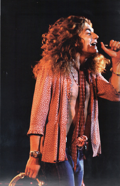 misszoso:  maureenplant:  cinderella-sunshine:  lewandoize:  Robert Plant, tambourine man  I love the roses in his jeans.  I love his smile and his missing tooth  I love him
