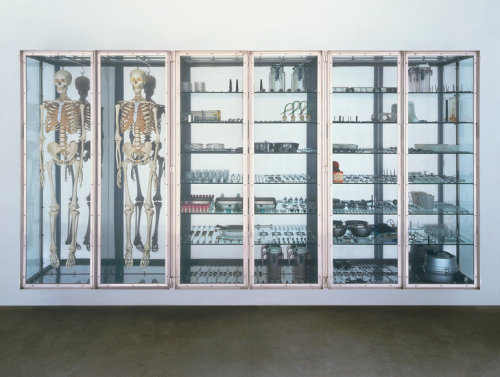 ephemeralol:   Damien Hirst   Stripteaser   1996   Glass, stainless steel, steel, nickel, brass, rubber, human skeletons, medical and surgical equipment   1956 x 3759 x 508 mm | 77 x 148 x 20 in