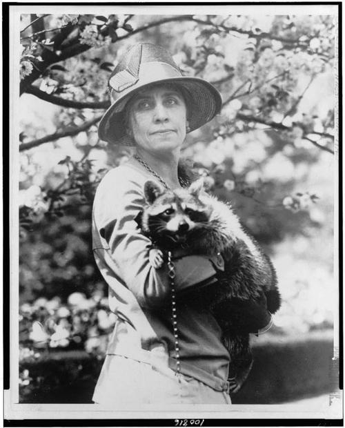 First Lady Grace Coolidge and her pet raccoon - it's name was Rebecca…