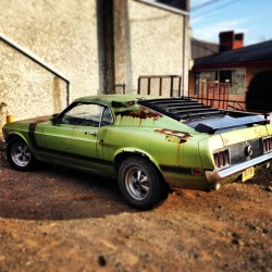 peaceisthereasonwhy:  love it 🚘 #mustang #vintage #car #sporty #oldfashioned #junkyard