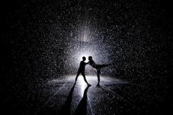laughingsquid:  'Rain Room' Interactive Indoor Downpour Installation Now at MoMA in New York City