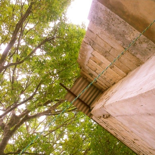 Después de una mañana larga. #Verde #green #geometry #arquitectura #tree