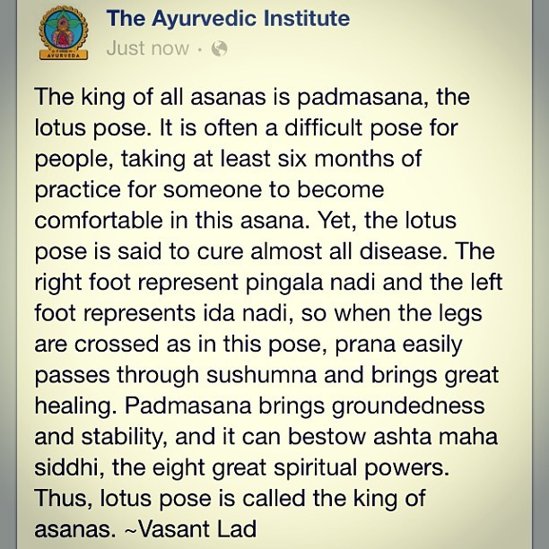 I love it when facebook brings me wisdom #ayurveda #yoga #yogi #meditation