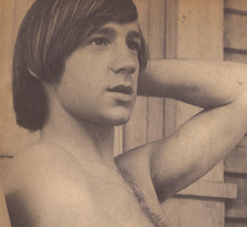 letsdanceon:  tiger beatnovember 1966 peter is so adorable here i can't even deal
