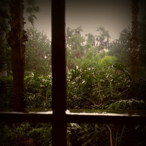 Rainy day. #RollinsCollege #WinterParkFl