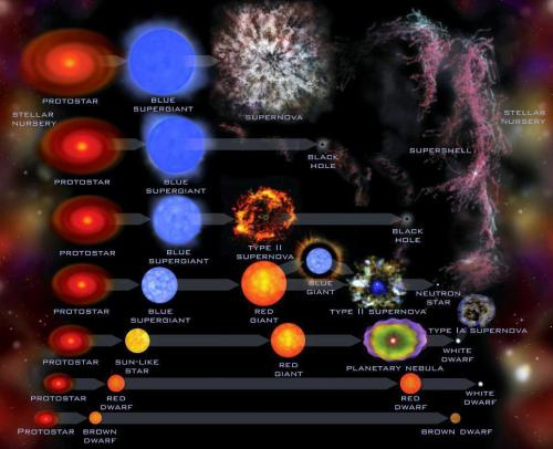 "The Evolution of Stars This graphic gives a summary of our best current understanding of the evolution of stars, showing their birth, middle age and eventual demise.  The lowest mass stars are shown at the bottom and the highest mass stars at the top. The very top line is a new addition, compelled by the detection of SN 2006gy — one of the brightest stellar explosions ever recorded — that describes the evolution of the most massive stars in the universe.  Observational evidence for the special type of explosion shown here — which is incredibly bright and obliterates the star rather than producing a black hole — was lacking until SN 2006gy was found.""(Image and text via the SETI Institute. via: I Fucking Love Science) (view larger here)"