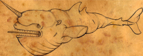 kerenhasson:  Some kind of whale/ narwhal