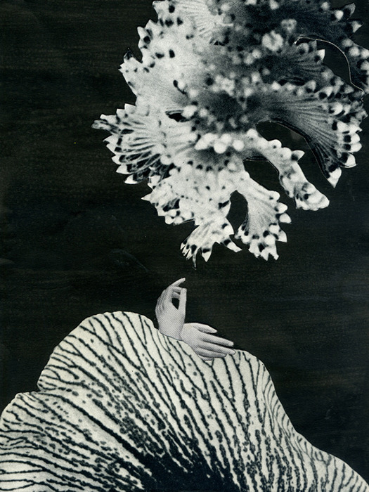 darksilenceinsuburbia:  Yann Bagot. Échos Series, 2011. Collages et encre de chine, 13 x 18 cm.     Website