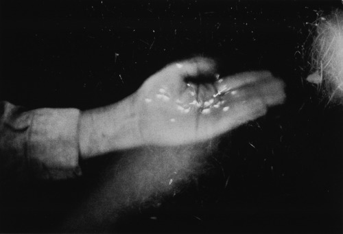 xamounts:  Duane Michaels, Fireflies in my Hands, 1973