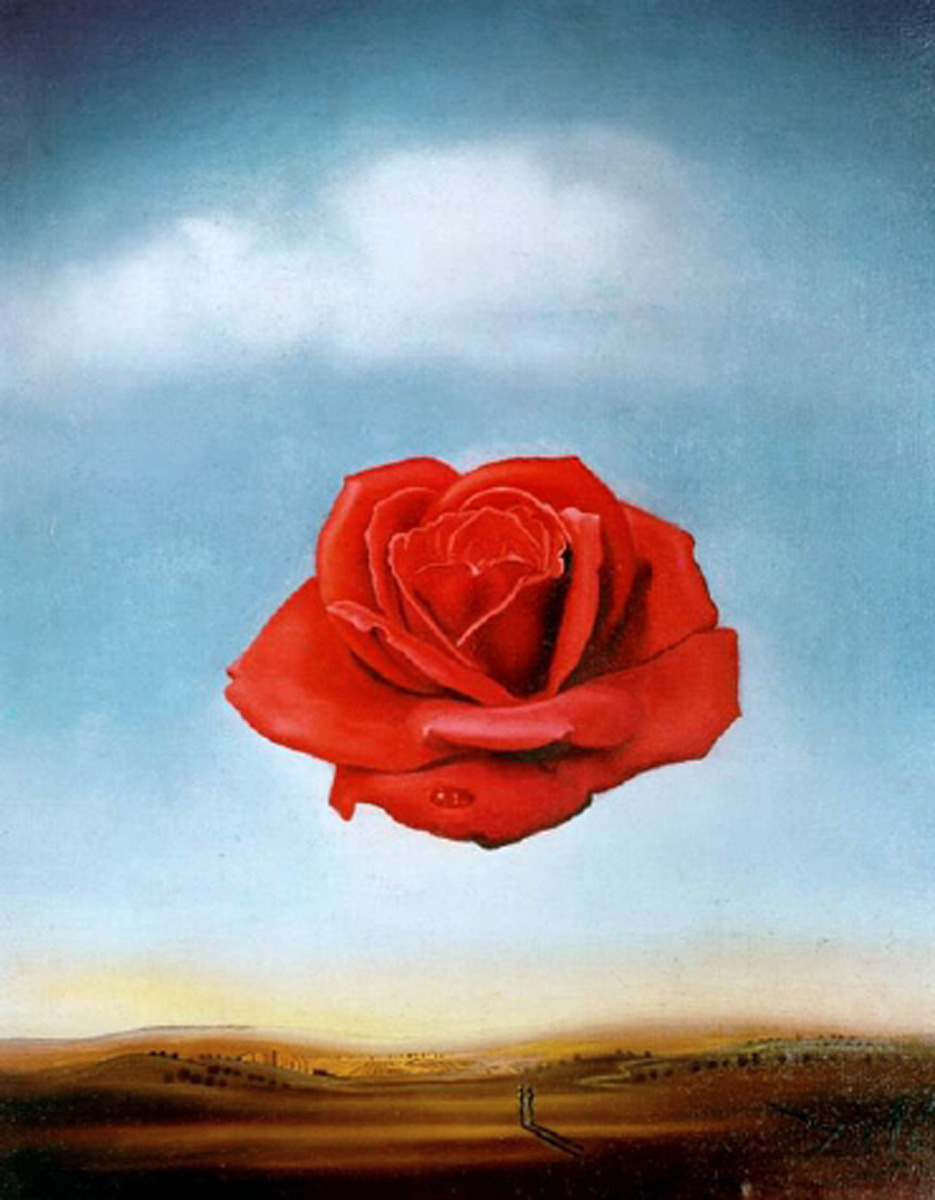 planb-eauty:  Meditative Rose  Salvador Dali, 1958
