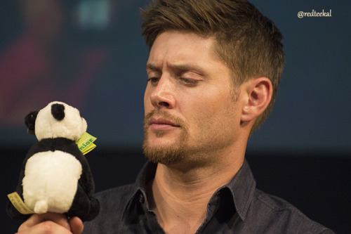 redteekal:  Jensen and the Panda - JIB 2013 Misha attached a stuffed Panda to Jensen's microphone. Why? Because he's Misha. Jensen was all forlorn when it finally fell to the floor.