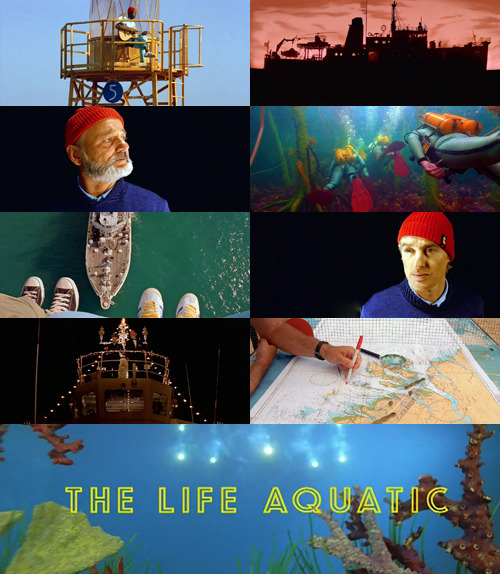 26-50 : The life aquatic with Steve Zissou  That's an endangered species at most. What would be the scientific purpose of killing it? Revenge.