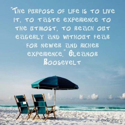 "The purpose of life is to live it, to taste experience to the utmost, to reach out eagerly and without fear for newer and richer experience."" #quotes #inspirationalquotes #roosevelt #eleanorroosevelt #inspire #purposeoflife"