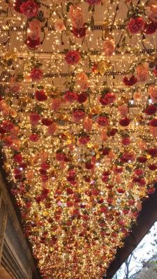 christmas lights paris roses My pictures noel galeries lafayette haussmann