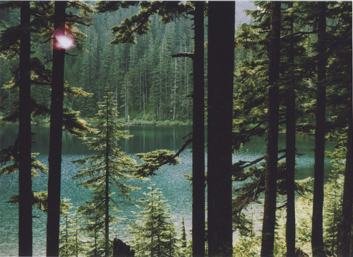 greatgabsby:  Annette Lake by eleanor lonardo on Flickr. seattle