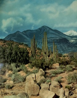 residuetrail:  Arizona Highways Color Album (1957)