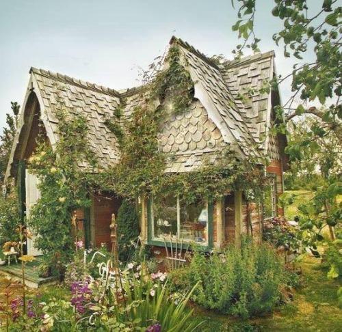 m-e-d-i-e-v-a-l-d-r-e-a-m-s:  Celtic houses