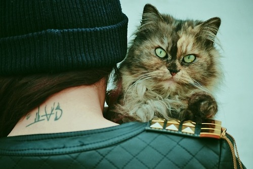 thatsrealistic:  Follow for piercings, tattoos and more!