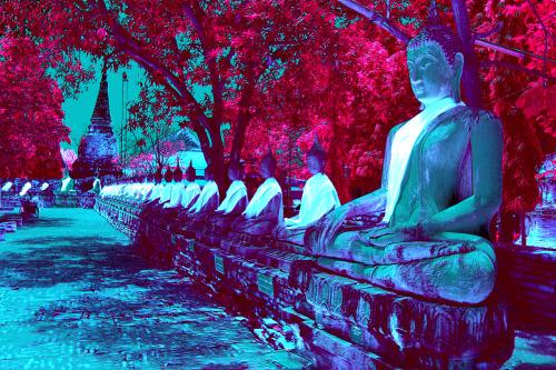 Thailand Priests