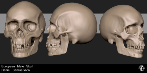 Just .started Kris Costa's Character Sculpting program at ZBrushWorkshops. going to be an awesome class