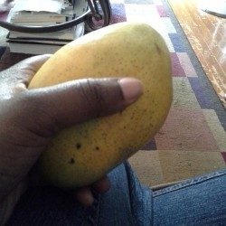 fromheretohaiti:  lafermeassurance:  First Haitian mango of the season! Summer is here in full force!  Lucky! I want some!