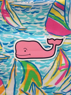 boatshoesandsurfboards:  a whale in a sea of Lilly