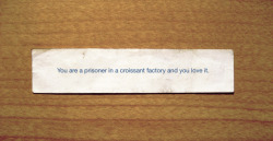 nevver:  Fortune cookie