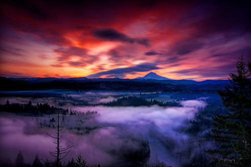 oceansing:  Mt Hood at Twilight by Like The Ocean on Flickr.
