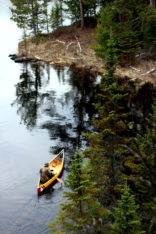 sanborncanoecompany:  Just returned from a few days canoeing in the Boundary Waters. More photos to come, but I wanted to share one tonight…. www.sanborncanoe.com