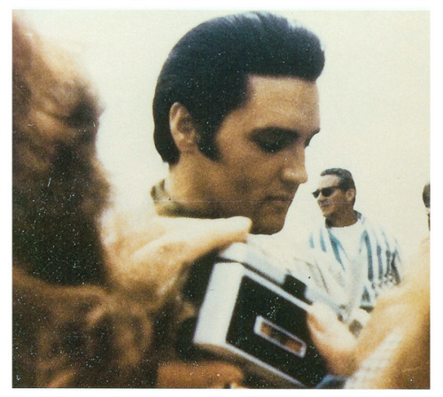 heartburnmotel:  Elvis signing autographs on the set of Live A Little, Love A Little, c. 1967.