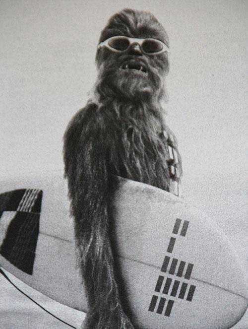 drilledbbw:  Hangin ten with a wookie….cool