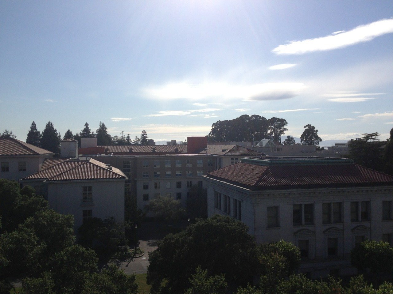 Berkeley summer! You lovely thing! Goodbye sophomore year. You treated me so very well.