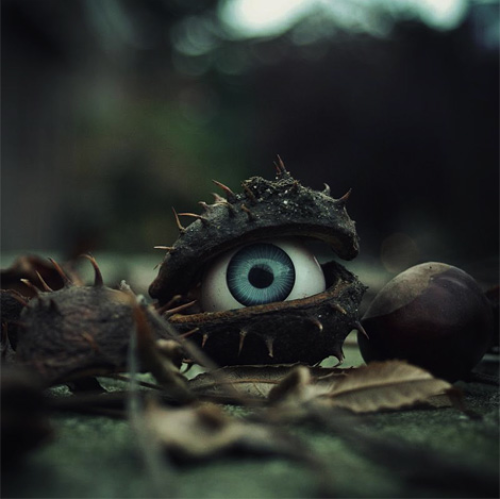 thekhooll:  The trees have eyes by Simon Clarke