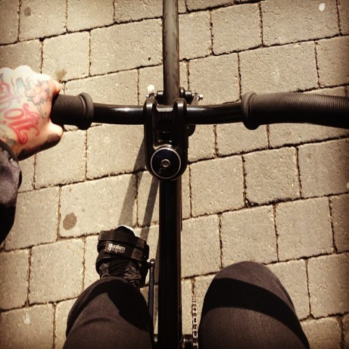 leimailemaow:  #AllBlackErrrTing #SunnyVibes #AeroJoke #FreeRun  awesome!!!