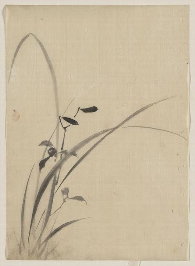 Grasses  Katsushika, Hokusai, 1760-1849. http://www.loc.gov/pictures/resource/jpd.02806/?co=jpd