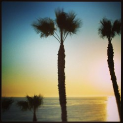 #Classic #california dreaming #sunset #livingthedreaming