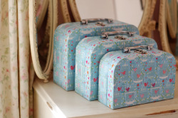 Set of 3 birdcage print suitcases £17