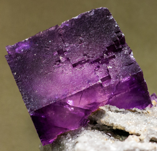 eocene:  Fluorite by patrickkuhl on Flickr.  I really want like an entire wall of this in my house one day.