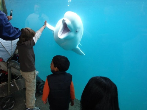 Happy Friday! High five, kid!
