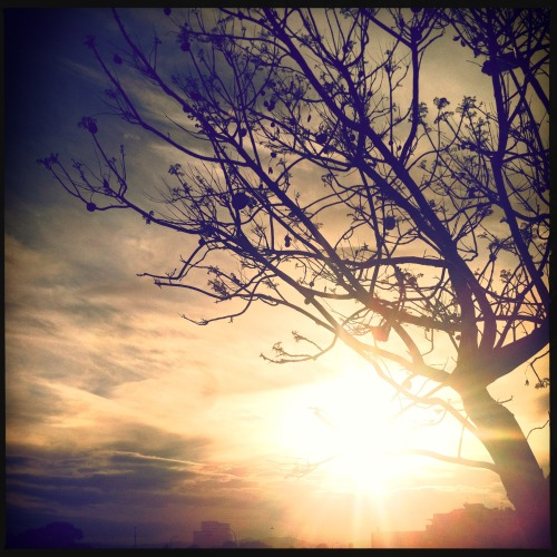 The sun is always shining somewhere.~☀  #day8_sun #hipstachallenge #hipstagraphy #hipstaconnect #makebeautiful
