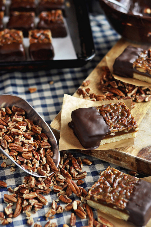 grayskymorning:  Chocolate-Dipped Pecan Bars