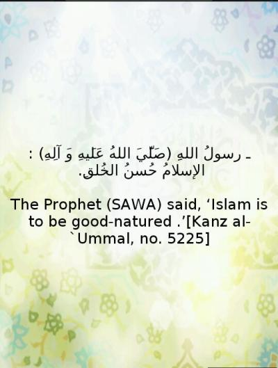 "team313:  ""Islam is to be good-natured""  - Prophet Muhammad (SAWA)"